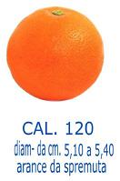 cal_120