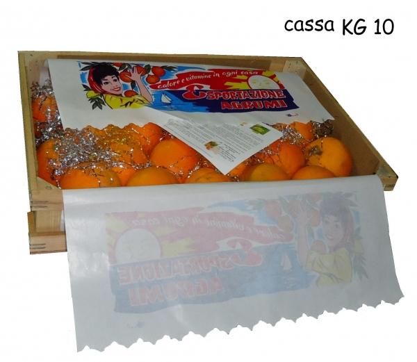 cassa_kg_10