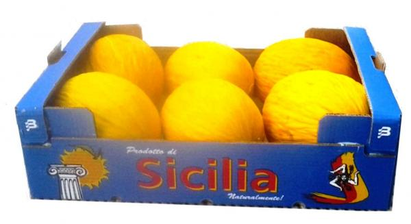 imballaggio_melone_giallo_helios_8